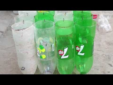 plastic bottle container for plants