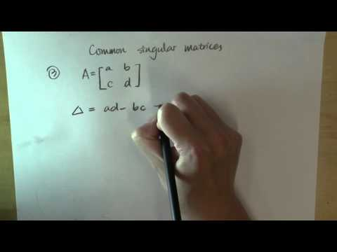 Common singular matrices: part 2