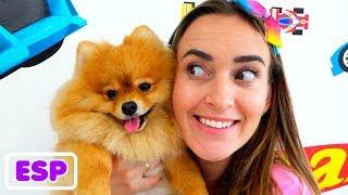 Vlad y Nikita Colección de videos con animales