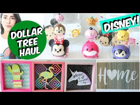 DOLLAR TREE HAUL NEW FINDS 2018