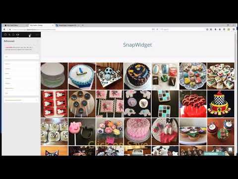 Adding a SnapWidget Instagram widget to BigCartel using custom HTML