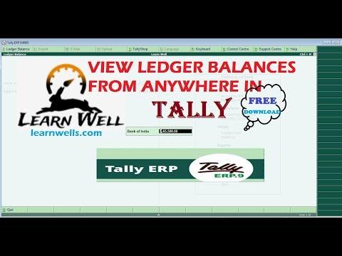 TALLY BALANCE VIEWER