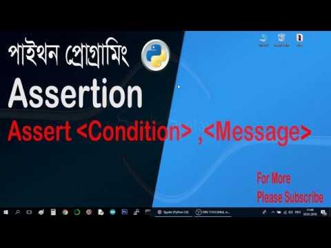 Assertion in python