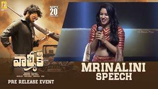 Actress Mrinalini Speech @ Valmiki Pre-Release Event | 14 Reels Plus