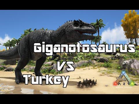 ARK: Survival Evolved - Giganotosaurus vs Turkey - Dino Battle