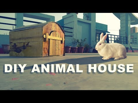DIY Animal House (Wooden) | 🐇 Bunny House | Rabbit Cage | Puppy House -ideashion
