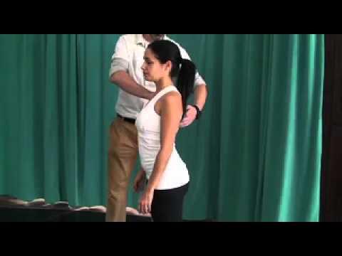 Alexander Technique: Sitting, Standing, Walking, Bending