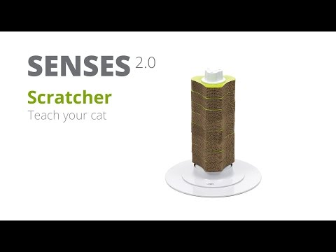 How to teach your cat to use the Catit Senses 2.0 Scratcher