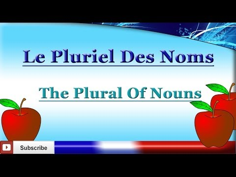 Learn French - Plural Of Nouns - How To Make A Noun Plural In French - Le pluriel des noms