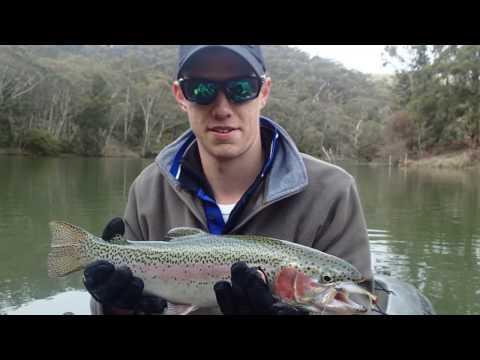 Trout Fishing - Lake Lyell NSW