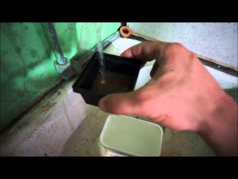 Decapsulating Brine Shrimp Eggs