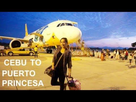 Cebu City to Puerto Princesa