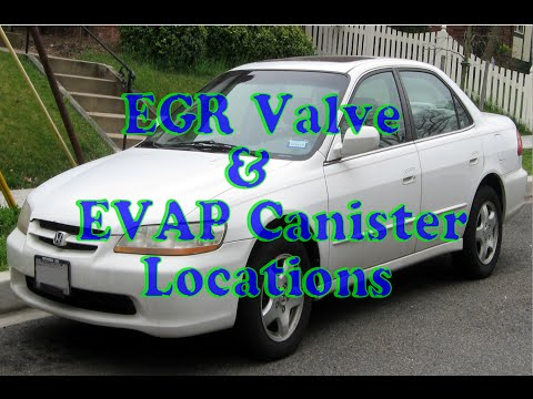 how to find EGR valve & EVAP canister on Honda Accord.