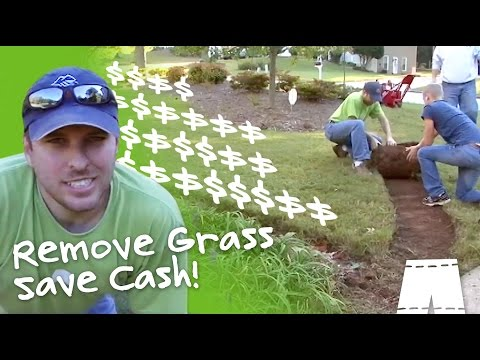 How To Save Money By Removing Grass
