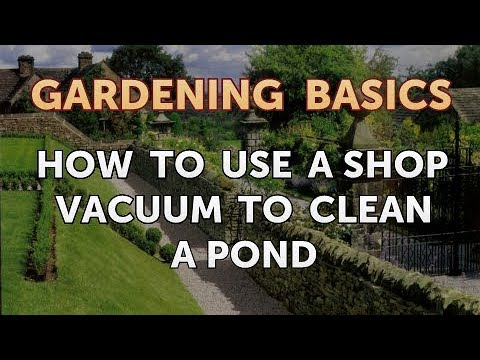 How to Use a Shop Vacuum to Clean a Pond