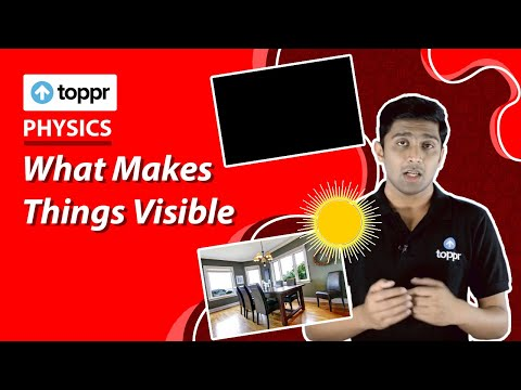 Class 10 Physics : Light | What Makes Things Visible