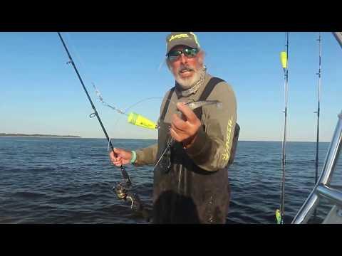 Catching bull redfish on popping corks