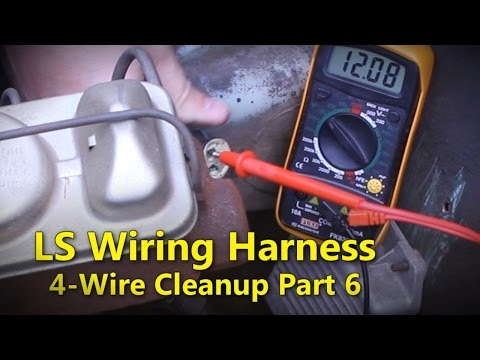 LS Wiring Harness Part 6 | Project Rowdy Ep018
