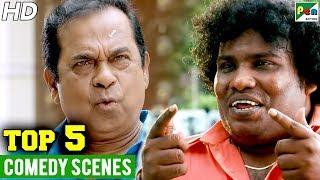 Top 5 Hindi Dubbed Best Comedy Scenes   Bandalbaaz, Ganga Ki Kasam, Jay Simha