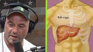 What a Liver Shot Really Feels Like   Joe Rogan