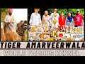Download TIGER AMRVEER WALA BULLY DOG BULLY KUTTA In Mp4 3Gp Full HD Video