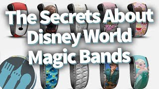 Download The Secrets People Don't Know About Disney World Magic Bands! Video