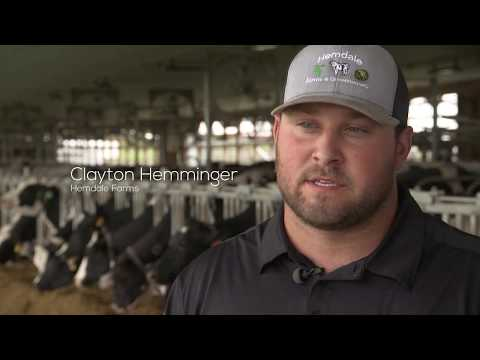 Family-Owned Dairy Farms