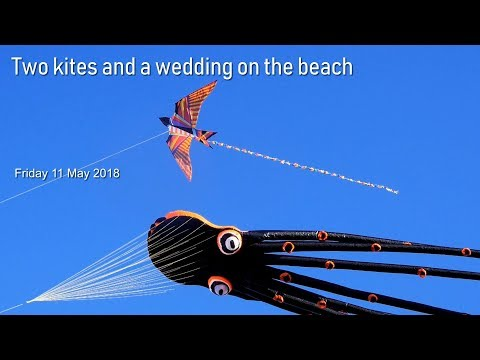 Two kites and a wedding on the beach