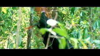Tango Charlie - Drama - Action Scene - Bobby Deol - Ajay Devgan - Barbaric Bodos Break In