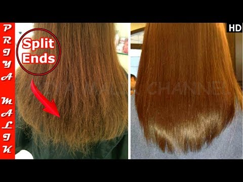 OMG ! INSTANTLY Remove Split Ends - Permanent Split Ends Treatment without Cutting - Priya Malik