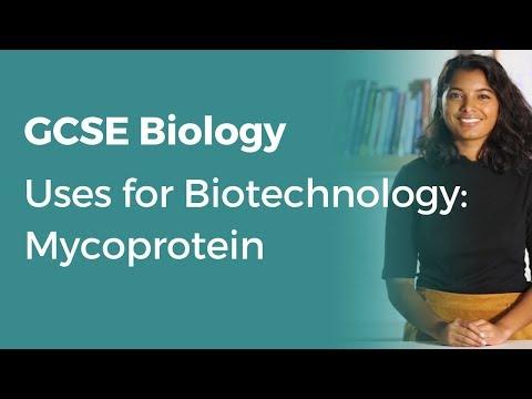 Uses for Biotechnology: Mycoprotein | 9-1 GCSE Biology | OCR, AQA, Edexcel