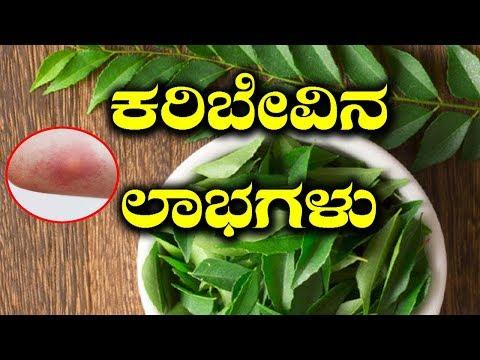 Special Benefits Of Curry Leaves | ಕರಿಬೇವು ತಿಂದರೆ ಸಿಗುವ ಲಾಭವೇನು ಗೊತ್ತಾ?