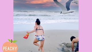 Girls vs BIRDS! 😂 | Bad Day? | Watch What Happens Next | Funny Moments