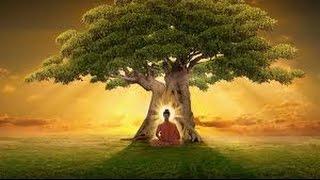 Vida y Enseñanzas de Buda - Ciencia del Saber