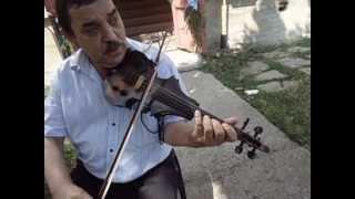 Download cel mai talentat oltean la vioara demonstratie show vioara muzica live maestru profesor Dutescu