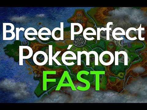 Breeding Perfect IVs Pokemon X and Y - the EASY method