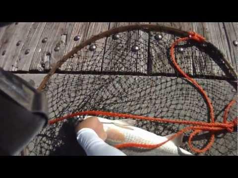 [Pier Fishing #18] Spanish Mackerel, Red Drum Fishing