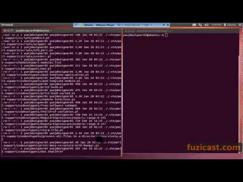 UNIX-1.7 Find Command (Video Tutorial)