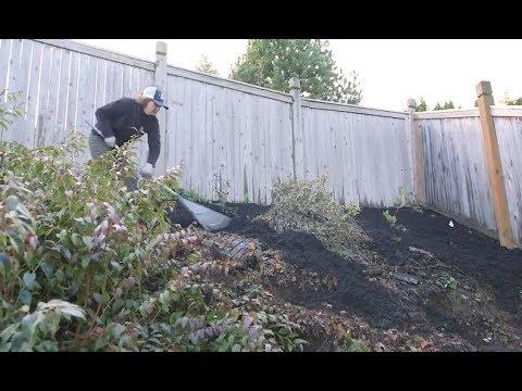 Spring Landscape Prep: Steep Slope Erosion Control