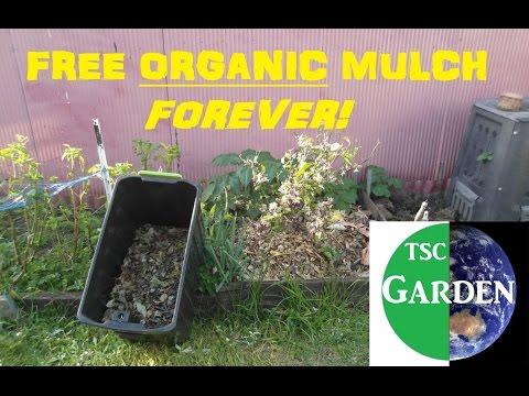 How I get FREE ORGANIC MULCH - DIY mulching