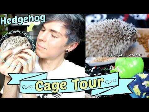 Hedgehog Cage Tour! | $2 Off Coupon