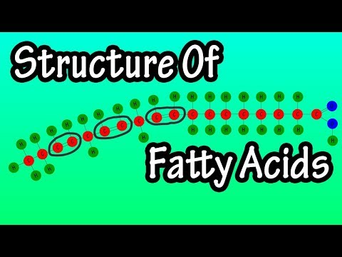 Fatty Acids - What Are Fatty Acids - Structure Of Fatty Acids - Types Of Fatty Acids