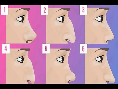 The Shape of Your NOSE Describes Your Character, What Number Is Your NOSE