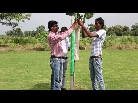 RAKSHAK   Self watering tree guard
