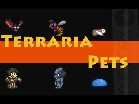 Let's Play Terraria Pre 1.2 Update - FREE Pets (Werewolf, Tiphia, Zombie, Guinea Pig, Slime, Bat)