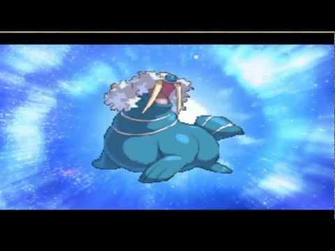 Pokemon Conquest: Sealeo Evolve!