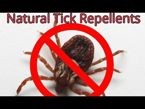 Natural Tick Repellents for Humans & Pets - Simple Homemade Recipes That Will Repel Ticks Naturally