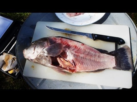 How to Fillet a Fish (quick and easy way)