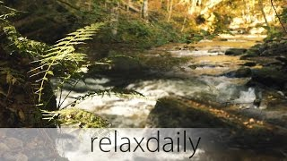Music for Studying Concentration and Reading [relaxing] - relaxdaily N°099