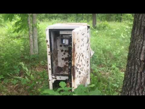 Antique ice box VS 1LB of Tannerite - with instant replay. Shot with AR 223